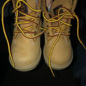 5c wheat timberland